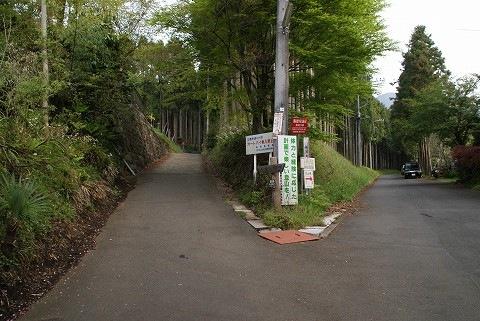 2009_0419_070816